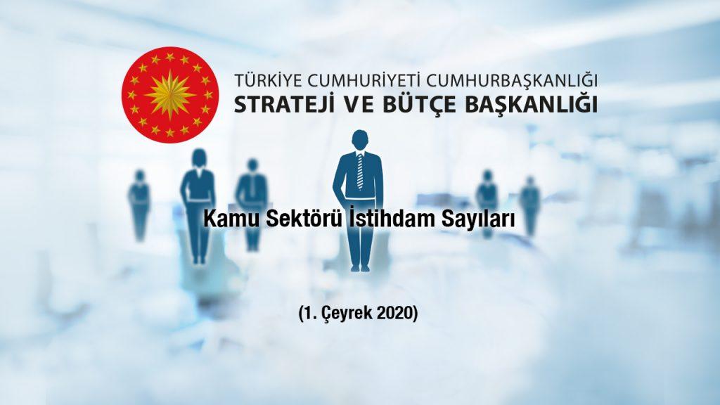 Kamu Sektörü İstihdam Sayıları 2020 1. Çeyrek