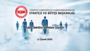 Kamu Sektörü İstihdam Sayıları 3. Çeyrek 2020