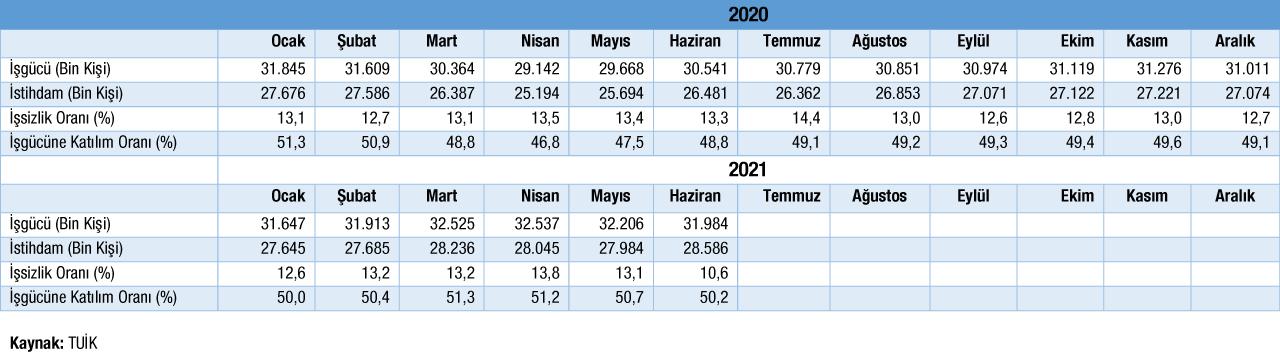 Temel İşgücü Göstergeleri Tablosu Haziran 2021