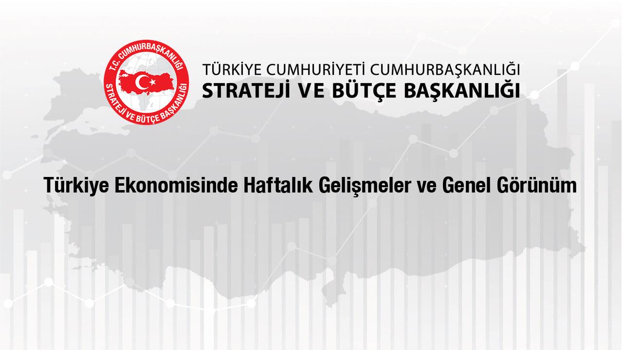 Türkiye Ekonomisinde Haftalık Gelişmeler ve Genel Görünüm
